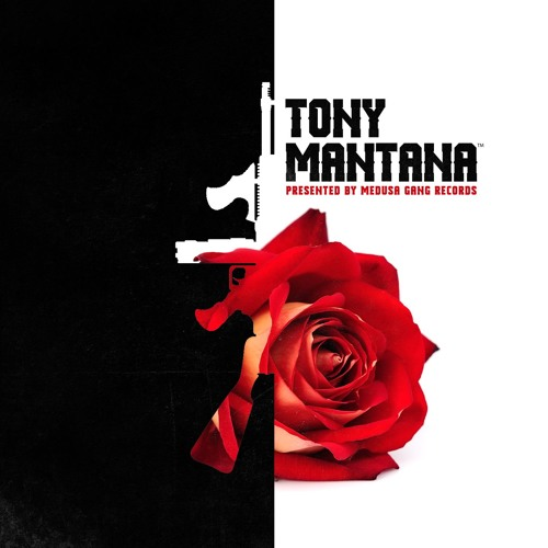 TONY MANTANA's avatar