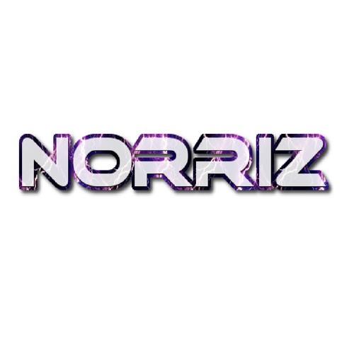 Norriz's avatar