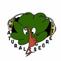 Natural & Secret - producer So Natural
