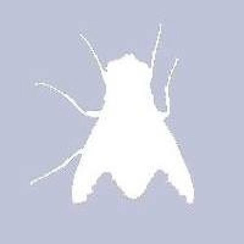 Loveletter.exe's avatar