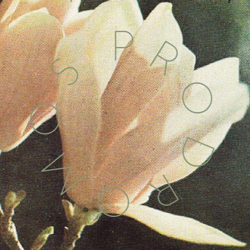 Prodromos Haleplis's avatar