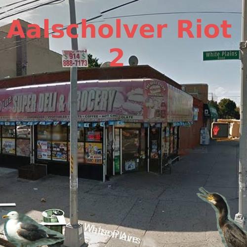 Aalscholver Riot's avatar