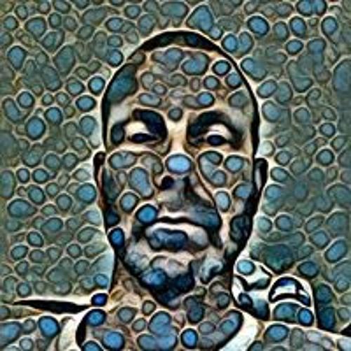 Harald van Oorschot's avatar