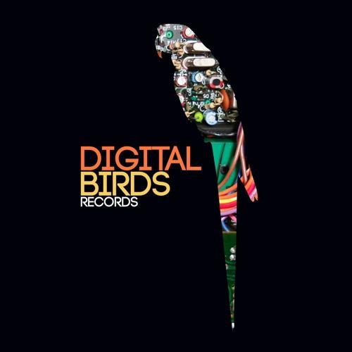 Digital Birds records's avatar