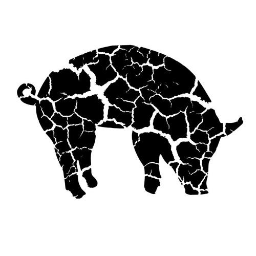 PIGCRACK RECORDS's avatar