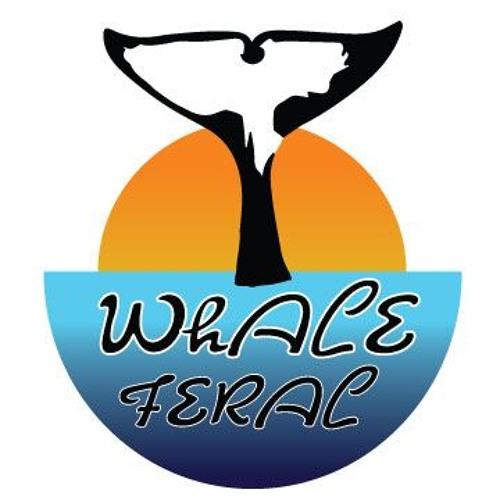Whale Feral's avatar
