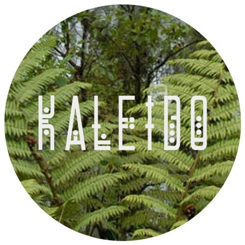 Kaleido Soundsystem's avatar