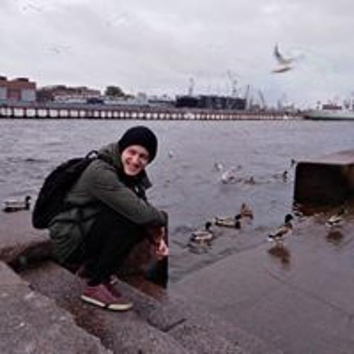 Bogdan Blazhenov's avatar