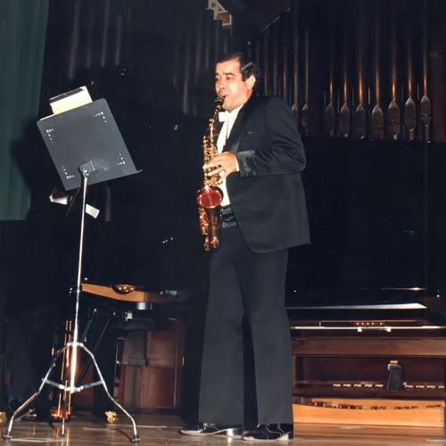 Miguel Àngel Villafruela Artigas's avatar