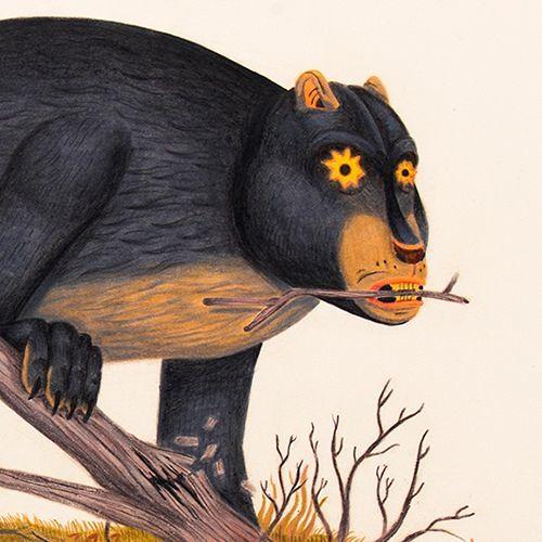 Biscuit Lion's avatar