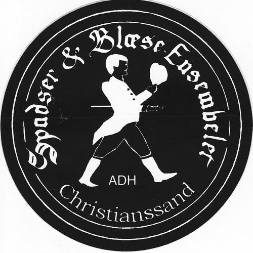 Spadser & Blæse-Ensembelet's avatar