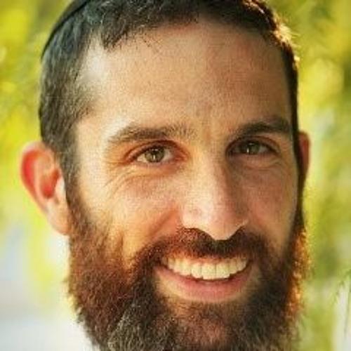 Dov Ber Cohen's avatar