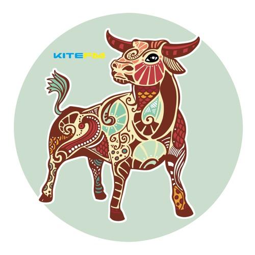 KITE-FM's avatar