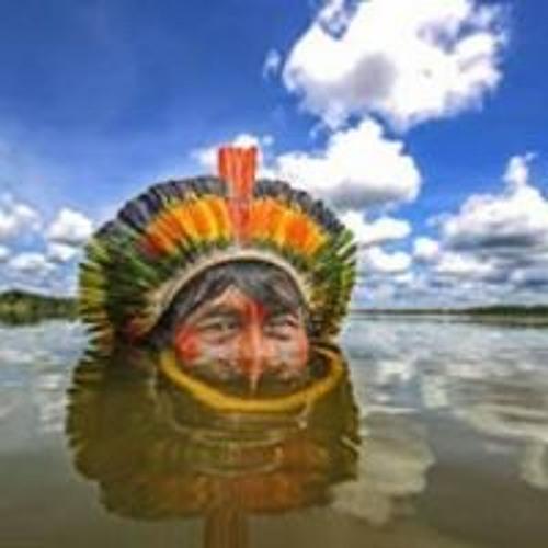 cajuina-grower's avatar
