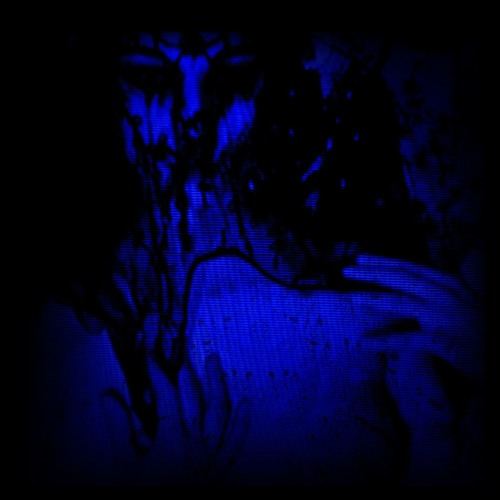 ♇ॱ☾'s avatar