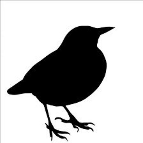 Blackbird Origin's avatar