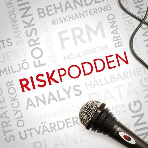 Avsnitt 3 - Försäkringar, riskhantering mot brand och ansvar