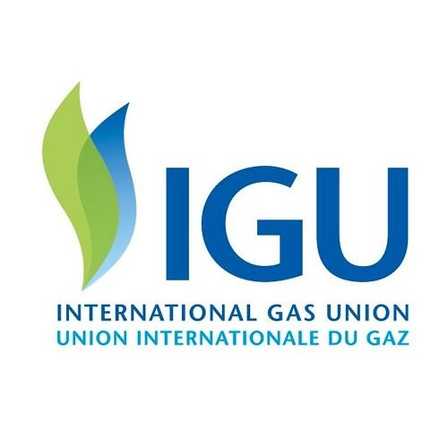 IGU - International Gas Union's avatar