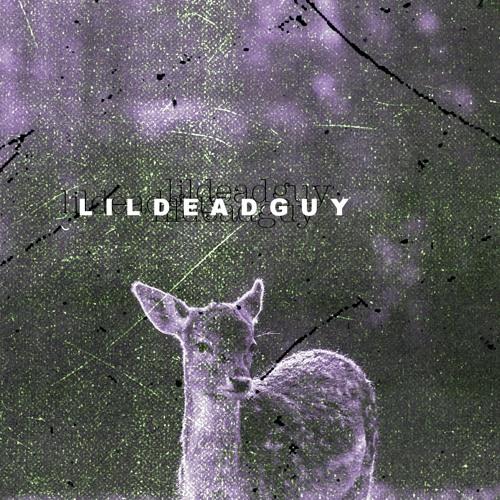 lildeadguy's avatar