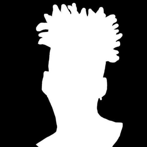 Praxi's avatar