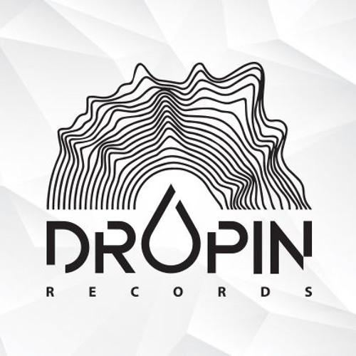 Dropin Records's avatar