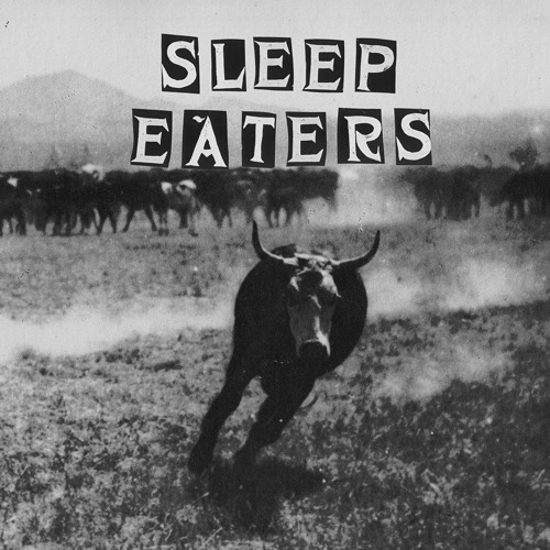 SLEEP EATERS's avatar