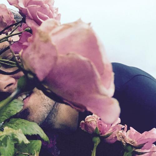 Alexander Rundgren's avatar