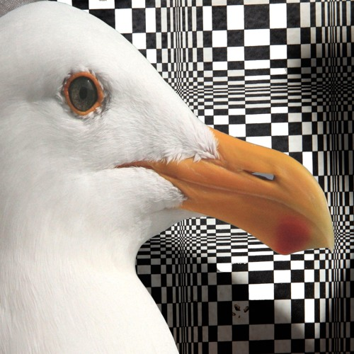 4QU4 DOM3's avatar