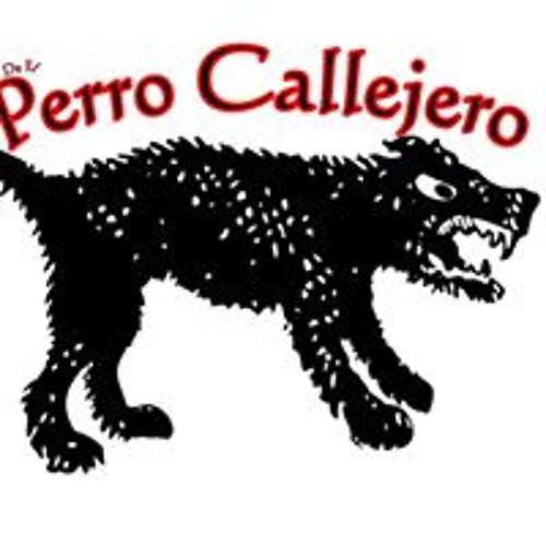 Perro Callejero's avatar
