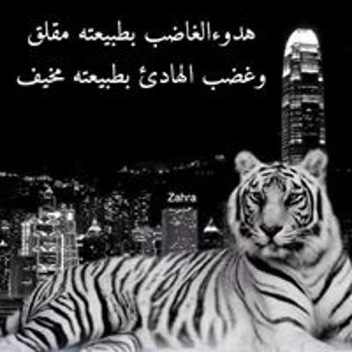 احمد موشة's avatar