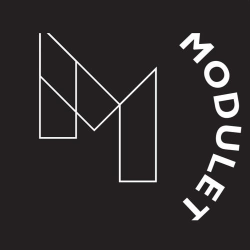 Modulet's avatar