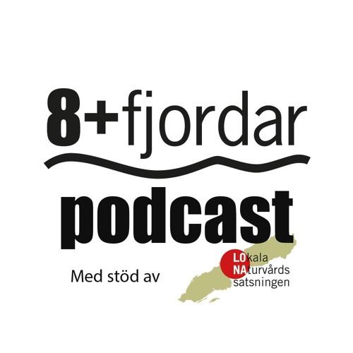 8+fjordar's avatar