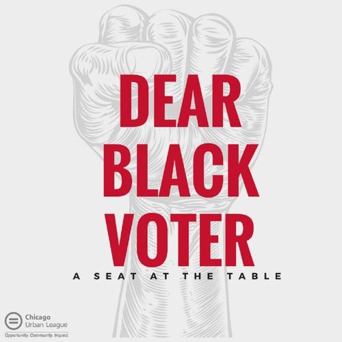 Dear Black Voter Podcast's avatar