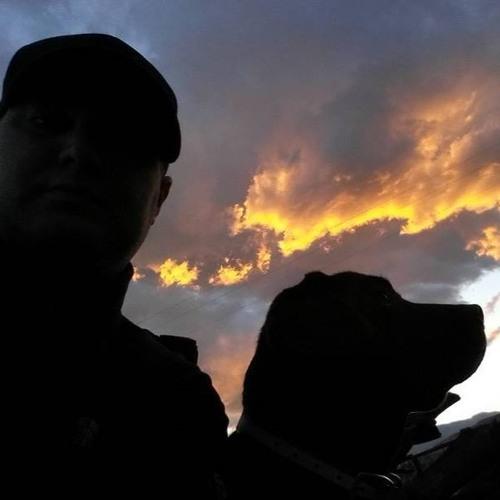 Damon D'Amore's avatar