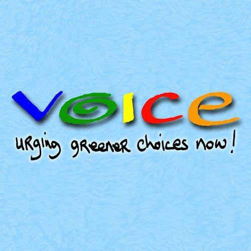 VOICE Ireland's avatar