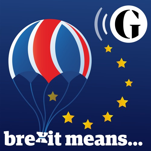 Brexit Means... - The Guardian's avatar