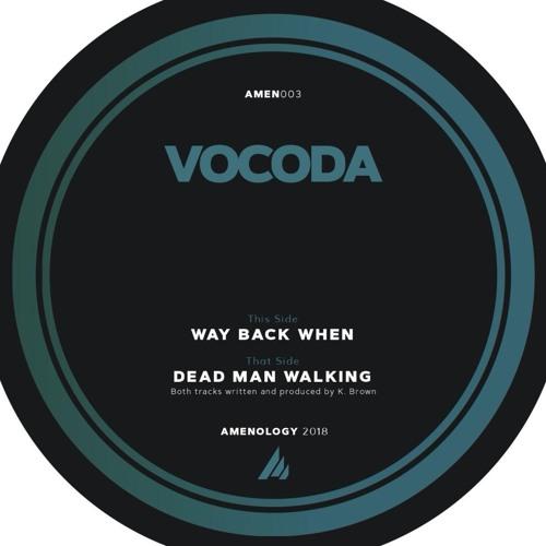 Vocoda's avatar