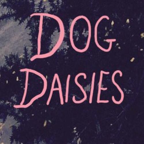 Dog Daisies's avatar