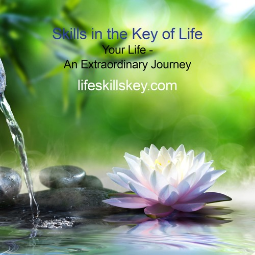 LifeSkillsKey's avatar