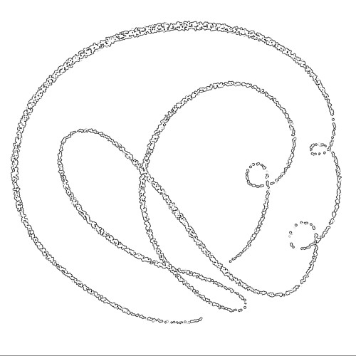 Curioustín's avatar