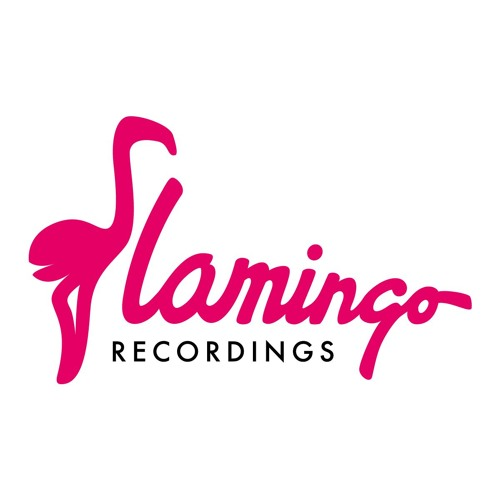 Flamingo Recordings's avatar