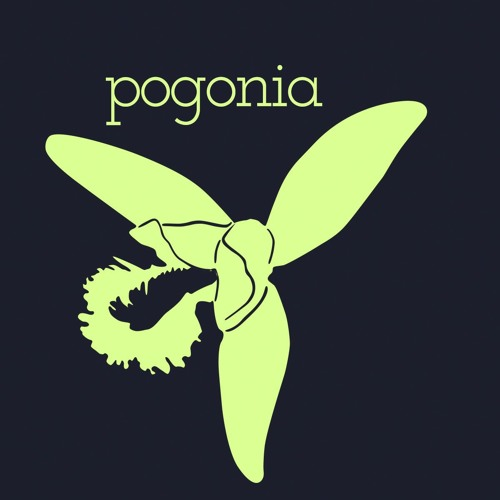 pogonia's avatar