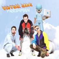 Virtual Gang