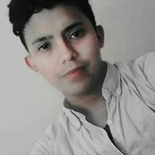 Christian Melgar's avatar