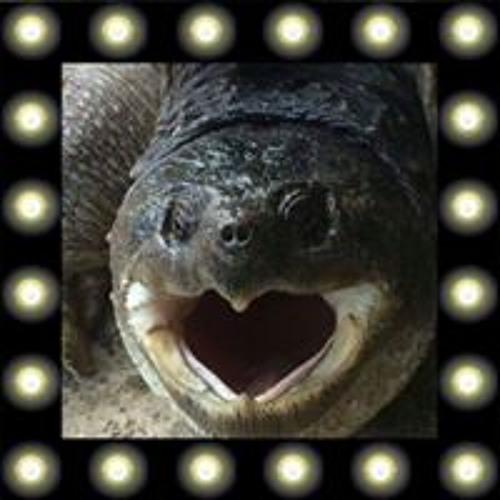 Sam Monroe's avatar