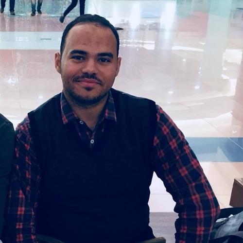 Mahmoud AbdElsalam Dalal's avatar
