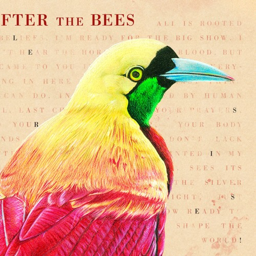 After the Bees's avatar