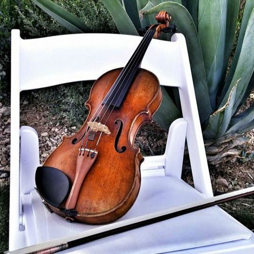 Sweetwater Strings's avatar