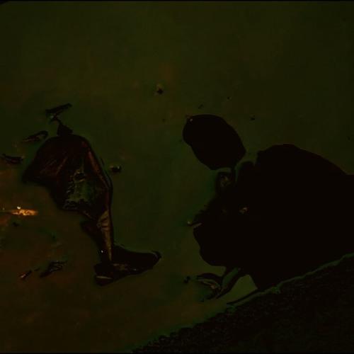 EP Man's avatar