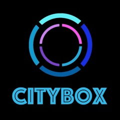 The Midnight - Fire In The Sky (Citybox Rmx)